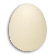 Foam Egg from Magic by Gosh