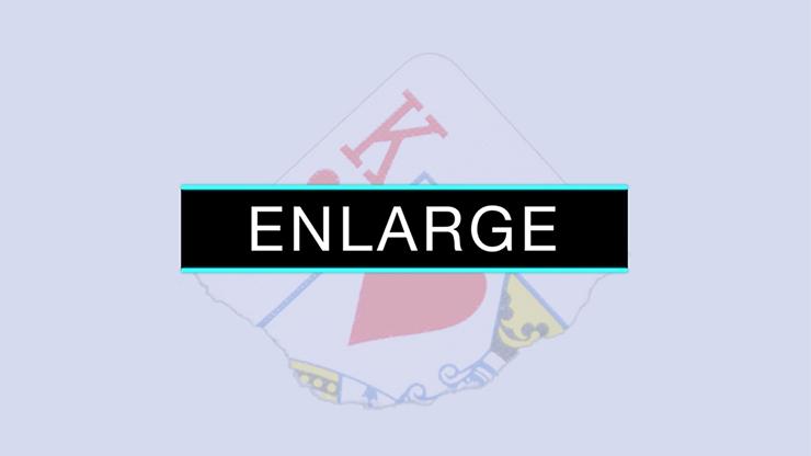 Enlarge (DVD and Gimmicks) by SansMinds - DVD