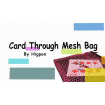 Card Through Mesh Bag by Higpon