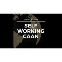 Self Working CAAN by Abhinav Bothra mixed media DOWNLOAD