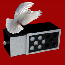 Holed Drawer Box Silver - Tora