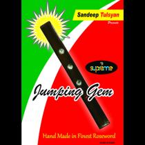 Jumping Gem Paddle by Sandeep Tulsyan