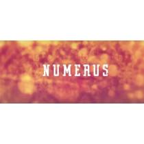 Numerus the trick by Raphael Macho
