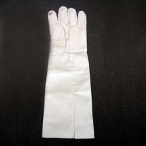 Single right hand Glove (Bird Arm Illusion)