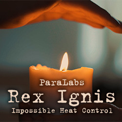 Rex Ignis 2.0 by ParaLabs