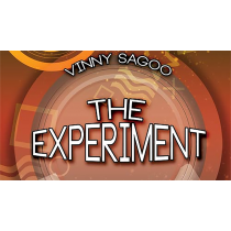 The Experiment by Vinny Sagoo