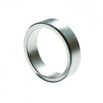 Magnetic Ring - Flat - Silver - 19 mm / Magnetischer Ring