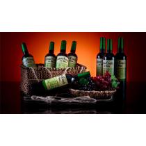 Green House Multiplying Wine Bottles by Tora Magic